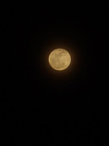 Moon03222008.JPG