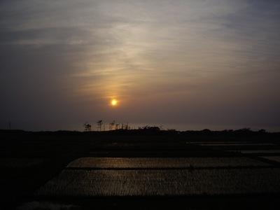 Sunset06012008-01.JPG