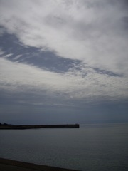 Togi_seaside10112007-1.jpg