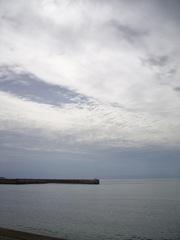 Togi_seaside10112007-2.jpg