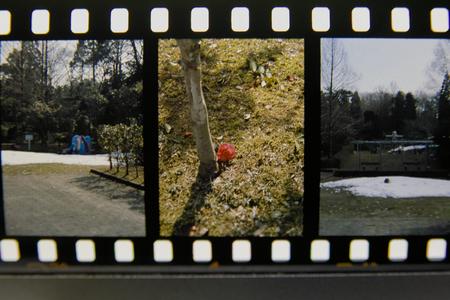 film03032011sd14-1.jpg