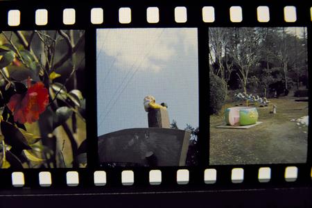 film03032011sd14-2.jpg