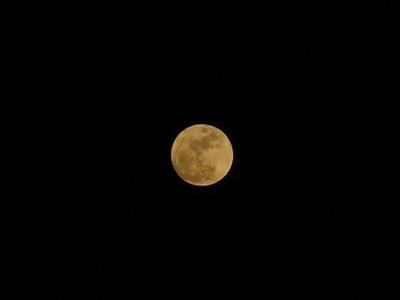 full-moon04092009-02.JPG