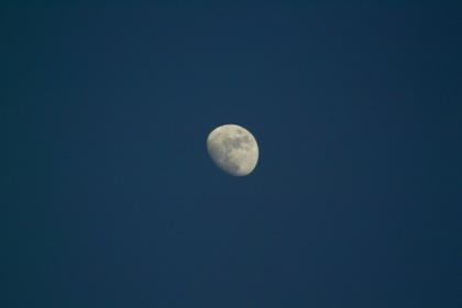 moon06142008.jpg