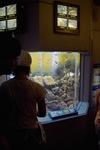 Aquarium08142007-07.jpg