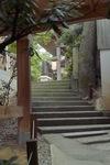 Ataka08192007-06.jpg