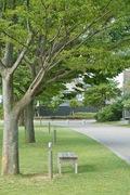 Bunkamura09042007-11.jpg