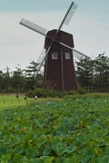 CCZ09092007-04.jpg