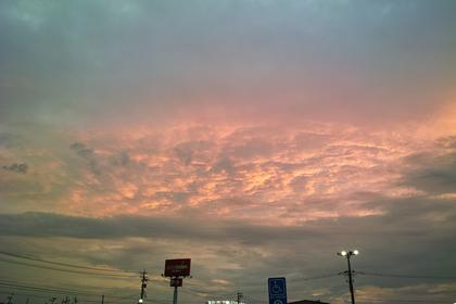 Dawn07032008d02.jpg