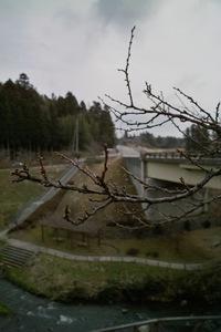 Fudou03202008-02.jpg