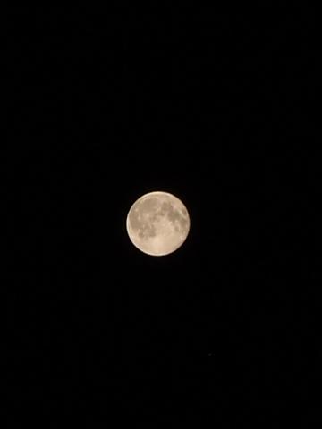 Full_Moon08252010-2.JPG