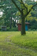 Goishi-park08252007-05.jpg
