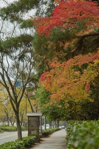 Hyakumangoku-St11242007-01.jpg