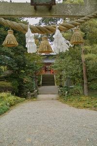 Kanazawa_shrine11242007-02.jpg