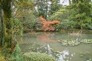 Kanazawa_shrine11242007-03.jpg