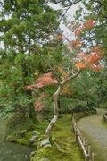 Kanazawa_shrine11242007-07.jpg