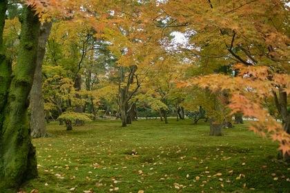 Kenrokuen11242007-01.jpg