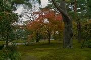 Kenrokuen11242007-03.jpg