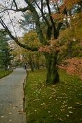 Kenrokuen11242007-04.jpg