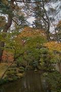 Kenrokuen11242007-06.jpg