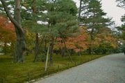 Kenrokuen11242007-08.jpg