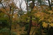Kenrokuen11242007-13.jpg