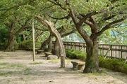 Komaruyama_Park08052007-07.jpg