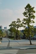Misogi_river-side08052007-01.jpg