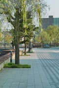 Misogi_river-side08052007-10.jpg
