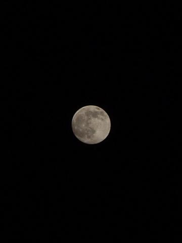 Moon12012009p2.JPG