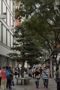 Nagoya09232007-06.jpg