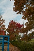 Nanakubo-park11242007-01.jpg