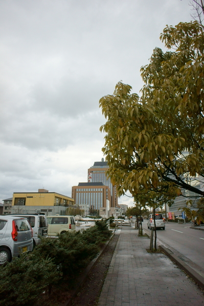 Prefectural_government02122011nex5.JPG