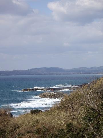 Sea02282008-02.JPG