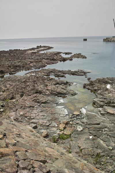 Sea06182008d1.jpg