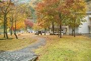 Shizenhogo-center11042007-03.jpg