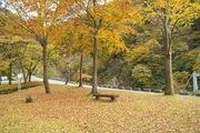 Shizenhogo-center11042007-07.jpg