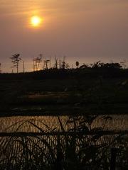 Sunset06012008-03.JPG