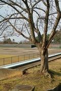Takamatsu-park11242007-07.jpg