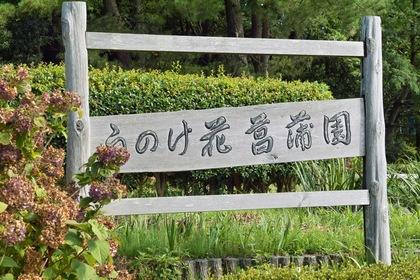 Unoke_Shoubuen08182007-01.jpg