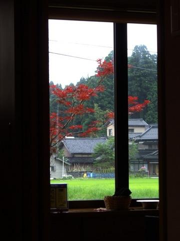 Window07122007.jpg