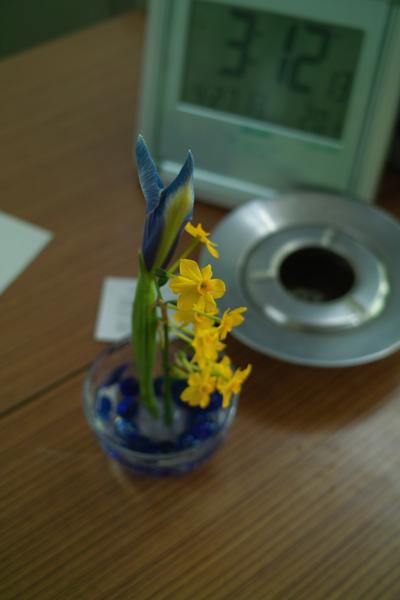 flower04272009-02dp2.jpg