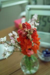 flower06022009dp2-1.jpg