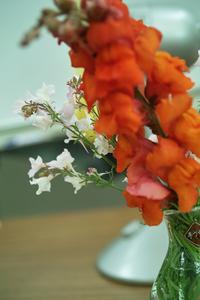 flower06022009dp2-2.jpg