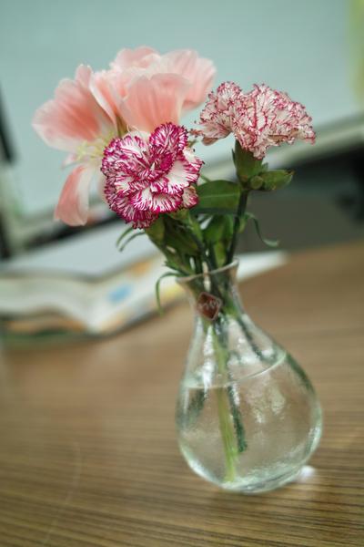 flowers06242009dp2.jpg