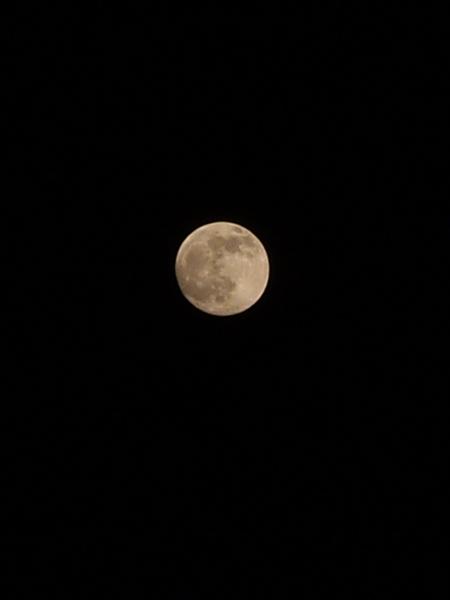 moon12202010-2.JPG