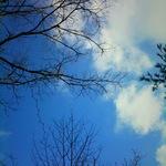 sky01242011ip04.JPG